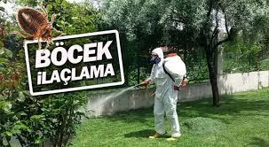 Ankara Dezenfekte İlaclama