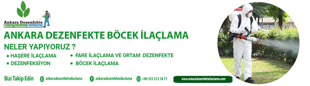 Ankara Dezenfekte Böcek
